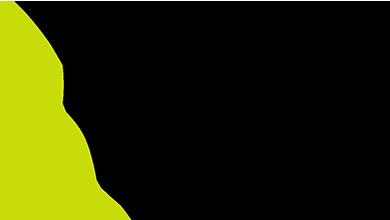 Chauve souris du logo de la Fédération Française de Spéléologie